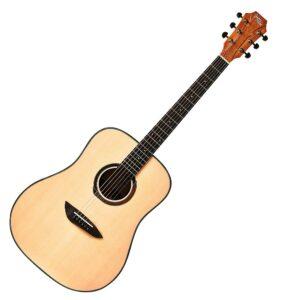 Gopherwood G100NA Acoustic Guitar