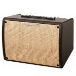 Ibanez IT30 Troubadour 30 watt Acoustic Guitar Combo Amplifier