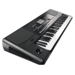 Korg Arranger Keyboard PA300