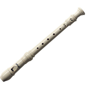 Stagg Recorder