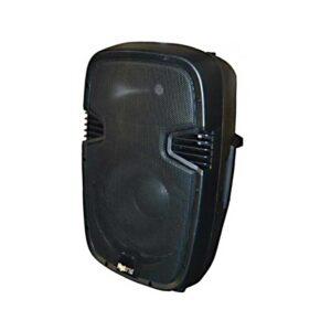Hybrid PM12 12inch Passive Speaker